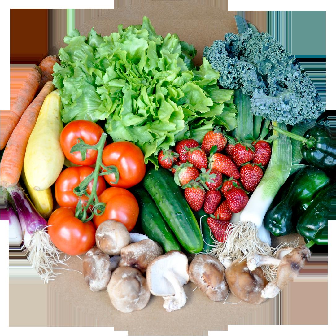 Seasonal Roots - Online Farmers Market - Farmers Market